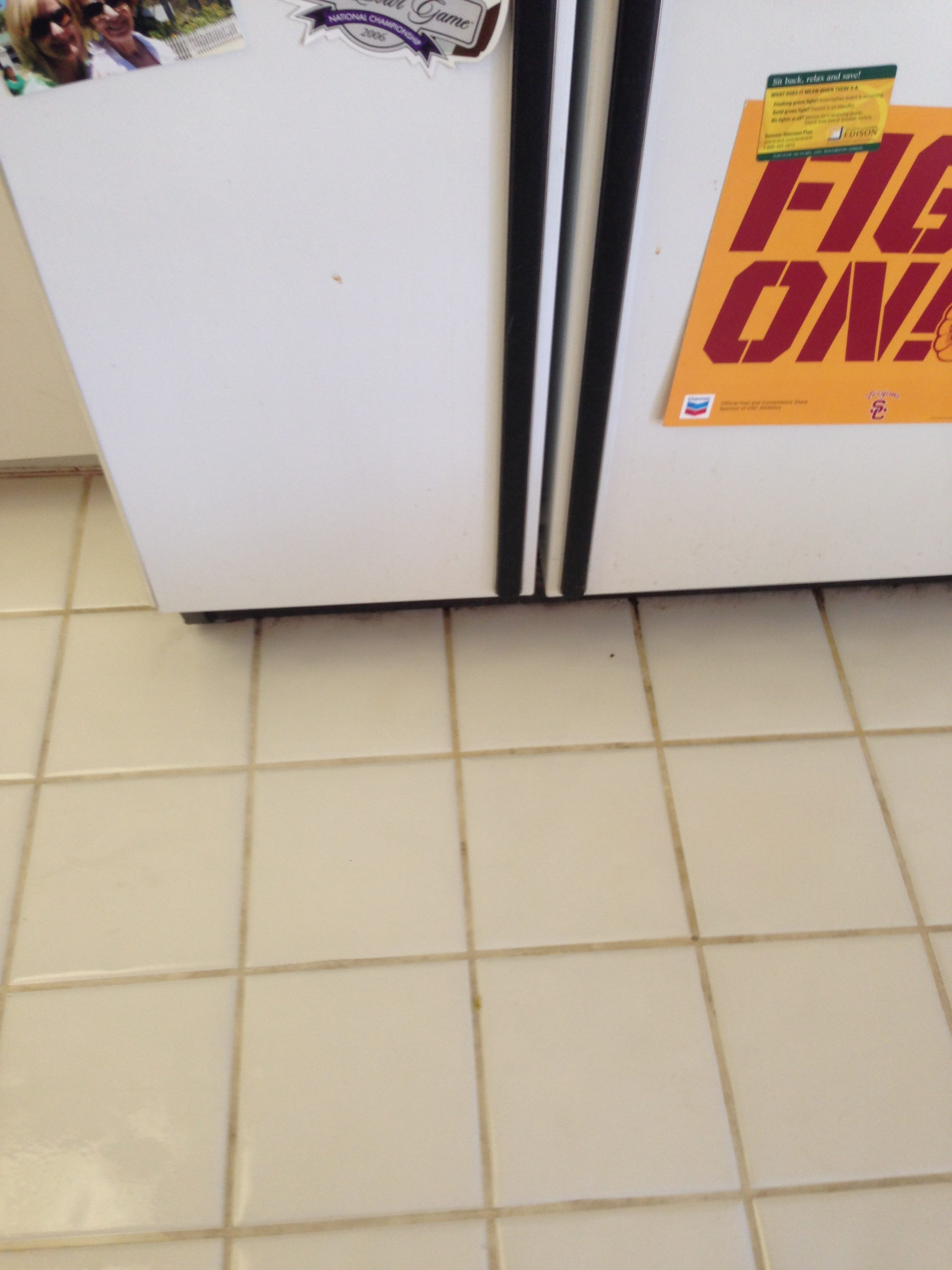 Tile Cleaning In Los Angeles County Socal Carpet Cleaning