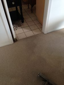 carpet cleaning Van Nuys