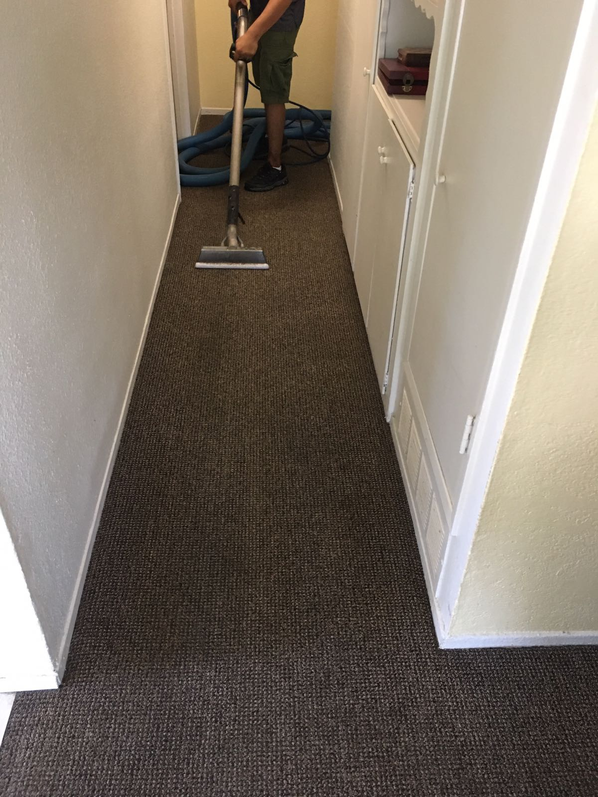 Carpet cleaning santa monica services socal carpet cleaning for Flooring santa monica